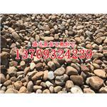 批发天然耐磨鹅卵石可做过滤层垫层小河卵石自然河石1公分以下