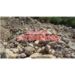 石狮河卵石 鹅卵石 景观石 黄蜡石 各种规格自然石批发